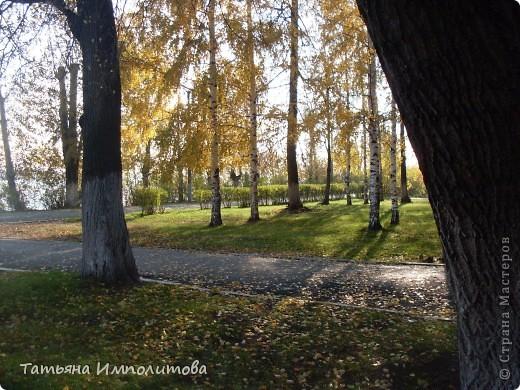 По уральским меркам вчера была хорошая,солнечная погодка и мы без промедления отправились в лес на прогулку фото 19