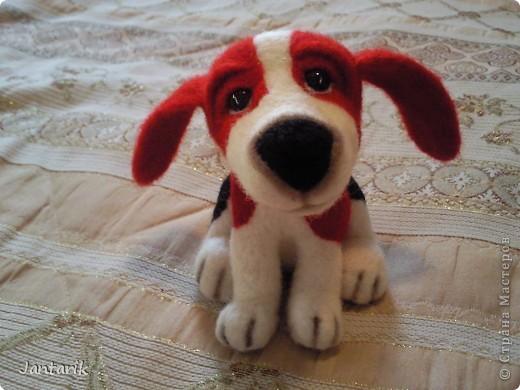 Народился у меня вот такой щеночек,благодаря подробному МК Елена 21. Конечно не получилось как у Елены, получился у меня вот такой Чудик. фото 1