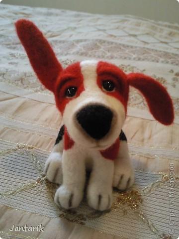 Народился у меня вот такой щеночек,благодаря подробному МК Елена 21. Конечно не получилось как у Елены, получился у меня вот такой Чудик. фото 5
