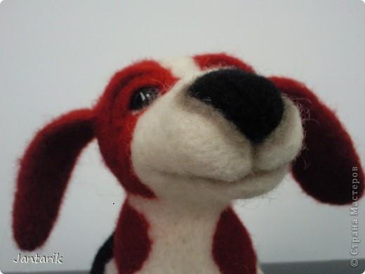 Народился у меня вот такой щеночек,благодаря подробному МК Елена 21. Конечно не получилось как у Елены, получился у меня вот такой Чудик. фото 6