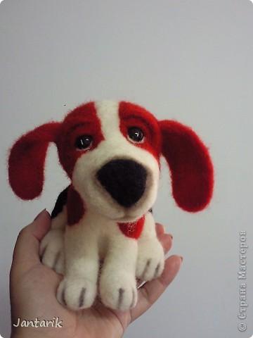 Народился у меня вот такой щеночек,благодаря подробному МК Елена 21. Конечно не получилось как у Елены, получился у меня вот такой Чудик. фото 8