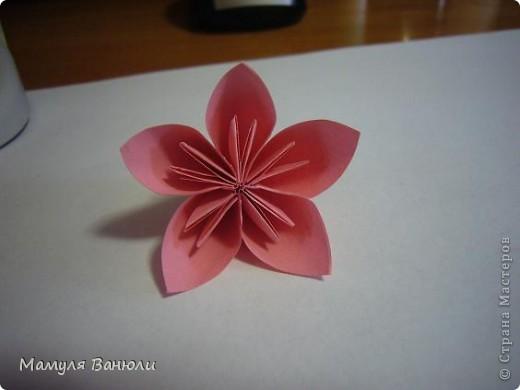 """Решая, какие именно цветочки посадить на Электру, я остановилась на модуле кусудамы """"Цветок"""". Только вот я решила делать элементы цветочка чуть проще: не из квадратика, а из треугольника. Тогда сами лепесточки с тычинками получаются нежнее (тычинок меньше и лепестки в один слой бумаги). фото 1"""
