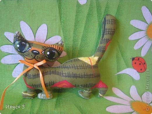 Кошечки , улитка и дракоши . фото 2