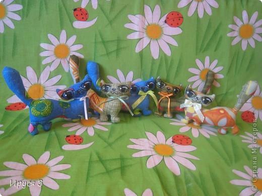 Кошечки , улитка и дракоши . фото 1
