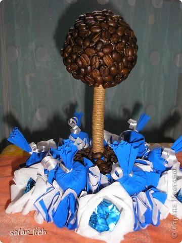 Решила сделать оригинальный подарок на день рождения. Это мое второе кофейное дерево и я дополнила его конфетами. И вот что получилось. фото 1