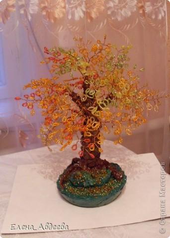 осеннее деревце  фото 8