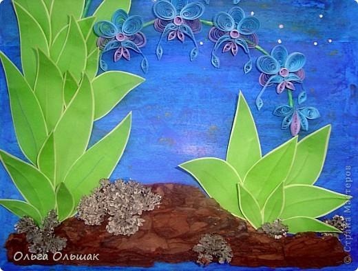 Выросли старые орхидеи на новом месте.А получилось это так:эти орхидеи: http://stranamasterov.ru/node/55764,  мы дарили с Катей классному руководителю в 2010 году,тогда я ещё не умела углублять рамочки,вот и решили взять работу на реставрацию-углубить рамочку,спрятать работу под стекло.    фото 3