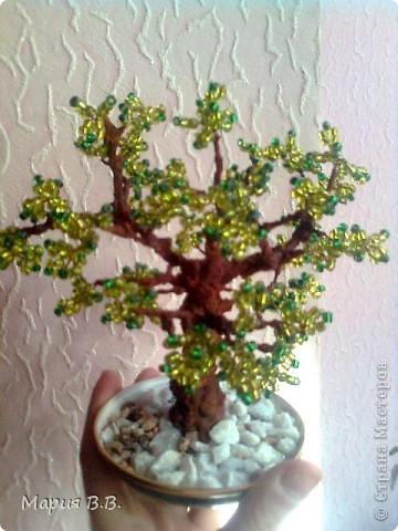 Бисерное деревце (из первых работ)