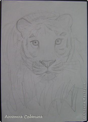 Здесь я собрала рисунки животных) фото 3