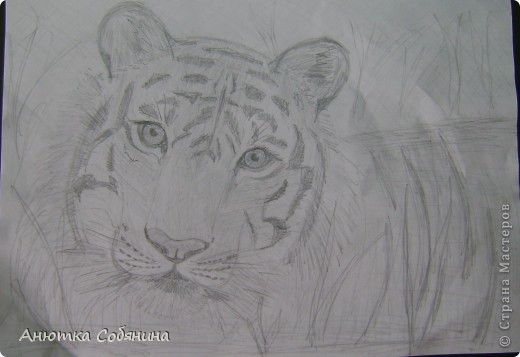 Здесь я собрала рисунки животных) фото 2
