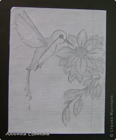 Здесь я собрала рисунки животных) фото 1