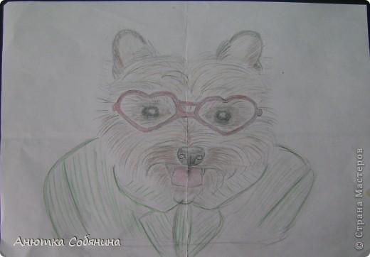 Здесь я собрала рисунки животных) фото 5