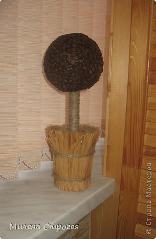 Впервые сделала кофейное дерево. Оказывается это совсем несложно. Главное - не торопиться - и все получится.  фото 1
