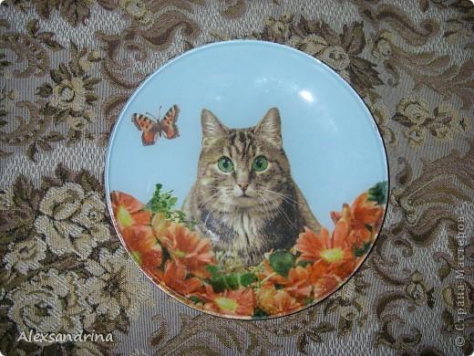 """Стеклянная тарелка с обратным декупажем из серии """"Коты"""""""