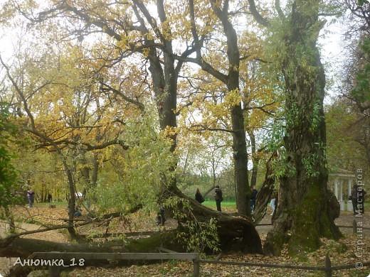 Приглашаю вас прогуляться по родовому имению Пушкина Большому Болдино. фото 16