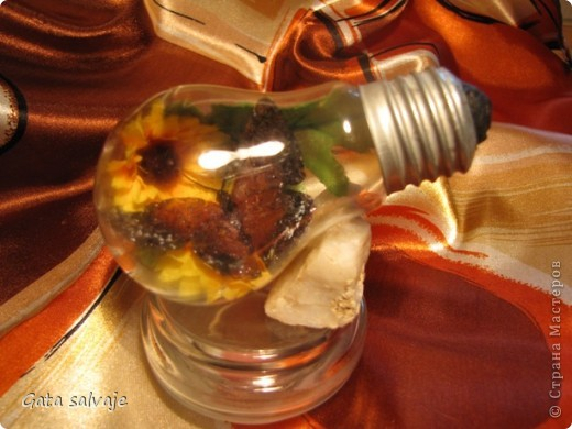 Наконец-то и мне удалось добыть перегоревшую лампочку. Теперь в ней поселилась бабочка. фото 3