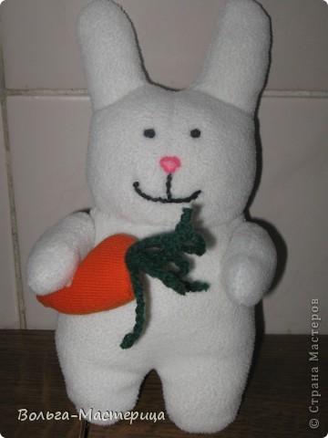 Классный заяц! фото 1