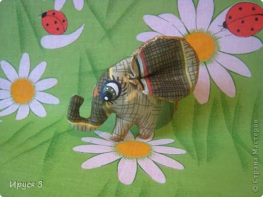 Слоники фото 2