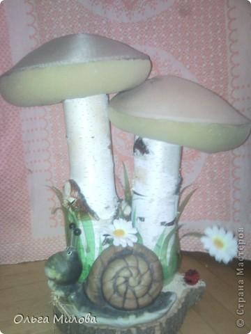 Мои грибочки на окошке в детском саду... фото 10