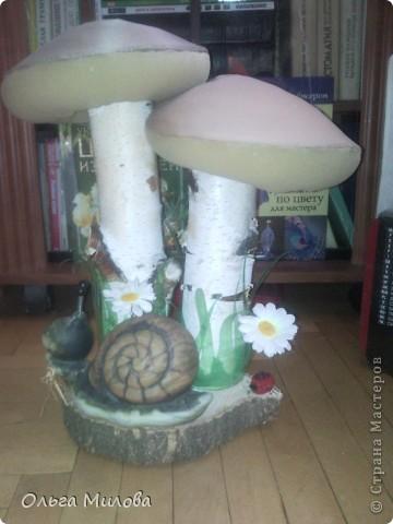 Мои грибочки на окошке в детском саду... фото 11