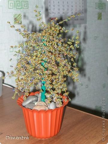 Это мое первое дерево так что не судите строго)))