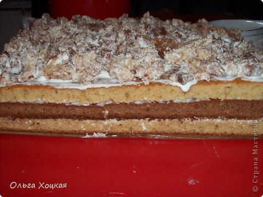 """Мой любимый торт """"Кучерявый Пинчер"""" пеку его наверное лет с 12 и рецепт не меняю.   фото 10"""