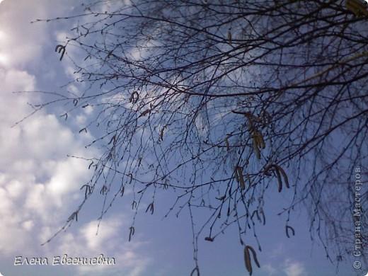 Вот под таким небом хочется жить! фото 45