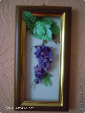 А вот и у меня поспел виноградный урожай!!!