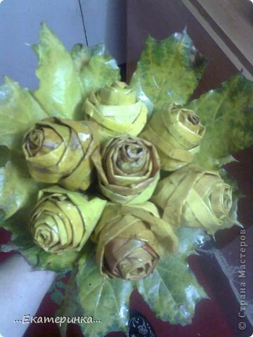 Очень нравятся розы и кленовые листья. Увидела МК Татьяны Просняковой http://stranamasterov.ru/node/2168  и не удержалась. фото 1
