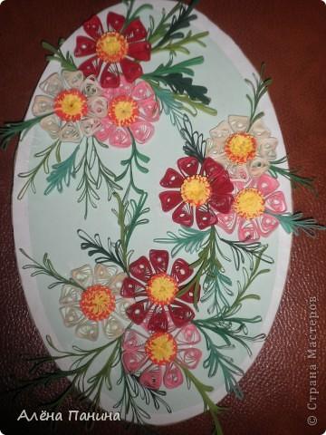 Вот они мои цветочки)) фото 1