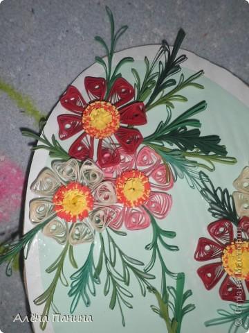 Вот они мои цветочки)) фото 3
