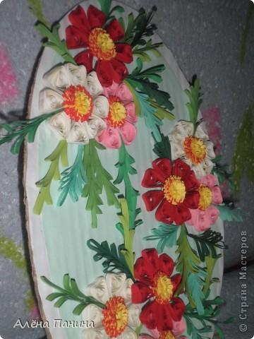 Вот они мои цветочки)) фото 4