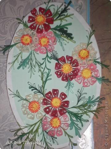 Вот они мои цветочки)) фото 5