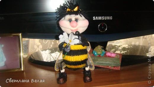 пчелка маленькая фото 2
