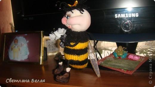 пчелка маленькая фото 5