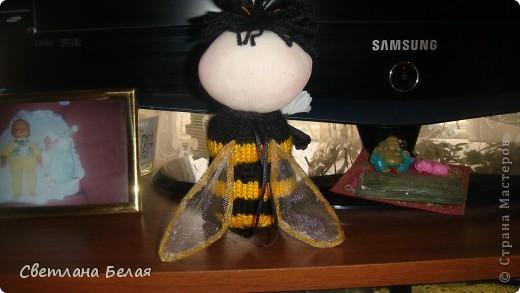 пчелка маленькая фото 6