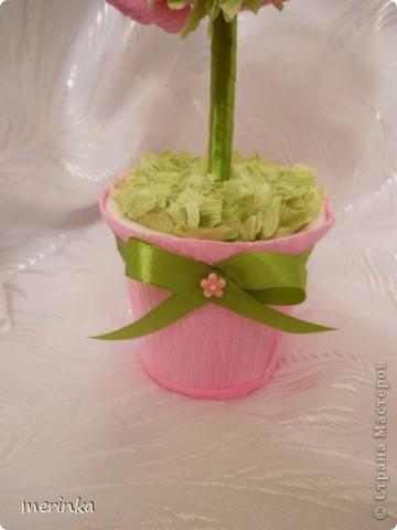Моя мама очень любит розы, причем именно розовые, вот я для нее сделала топиарий с розовыми цветочками фото 3
