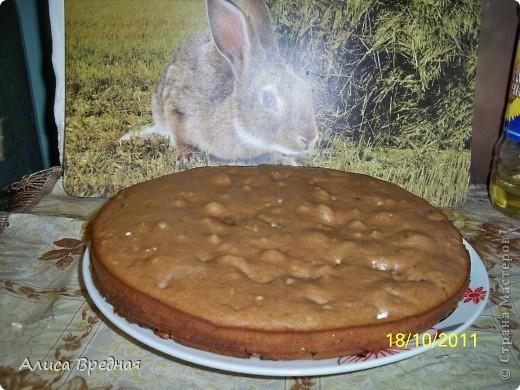 Всем привет))) выкладываю рецепт одного очень простого, вкусного, легкого и быстрого рецепта пирога... я его довольно часто готовлю еще со времен школы... фото 6