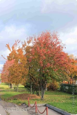 Осень, осень... фото 4