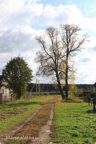 Осень, осень... фото 6