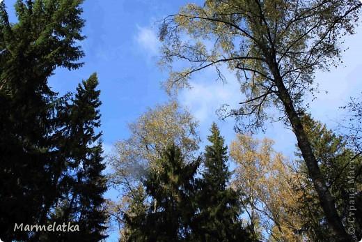 Осень, осень... фото 9