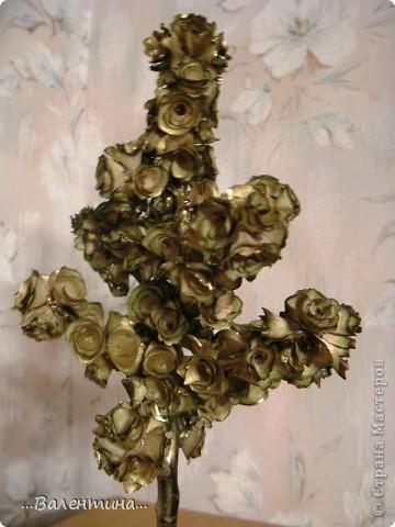 Завтра у моей крестницы День рождения.Ей исполняется 35 лет.Прекрасный возраст! захотелось сделать ей необычный подарок. Из деревянных  розочек (дерево- грецкий орех) получилось вот такое деревце. ______________________________________________ Грецкий орех-символ скрытой мудрости, а также плодородия и долгожительства. Грецкий орех подавался на свадьбах в Древней Греции и Риме как символ указанных качеств. Он олицетворяет силу в несчастии, принятие правильных решений в трудных ситуациях.  фото 3
