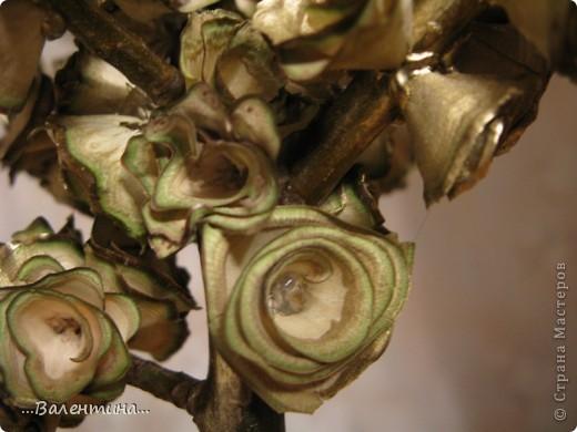 Завтра у моей крестницы День рождения.Ей исполняется 35 лет.Прекрасный возраст! захотелось сделать ей необычный подарок. Из деревянных  розочек (дерево- грецкий орех) получилось вот такое деревце. ______________________________________________ Грецкий орех-символ скрытой мудрости, а также плодородия и долгожительства. Грецкий орех подавался на свадьбах в Древней Греции и Риме как символ указанных качеств. Он олицетворяет силу в несчастии, принятие правильных решений в трудных ситуациях.  фото 6