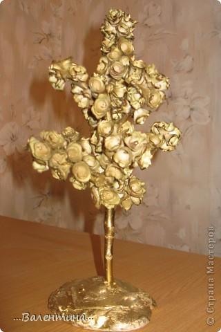 Завтра у моей крестницы День рождения.Ей исполняется 35 лет.Прекрасный возраст! захотелось сделать ей необычный подарок. Из деревянных  розочек (дерево- грецкий орех) получилось вот такое деревце. ______________________________________________ Грецкий орех-символ скрытой мудрости, а также плодородия и долгожительства. Грецкий орех подавался на свадьбах в Древней Греции и Риме как символ указанных качеств. Он олицетворяет силу в несчастии, принятие правильных решений в трудных ситуациях.  фото 1