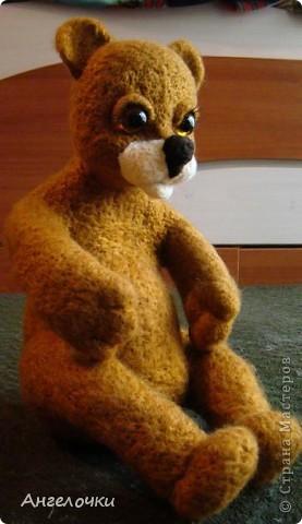 кот Васька фото 4