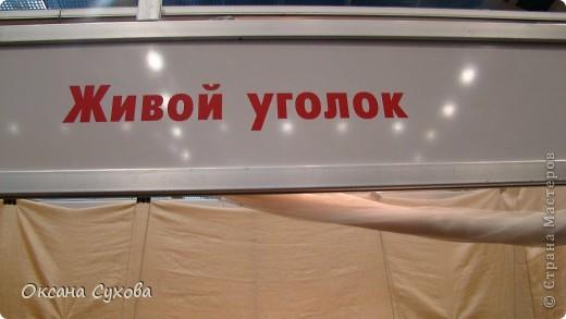 7 Международный Салон Кукол Москва ТЦ Тишинка /5  часть/ фото 78