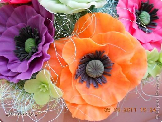 роза и маки фото 3
