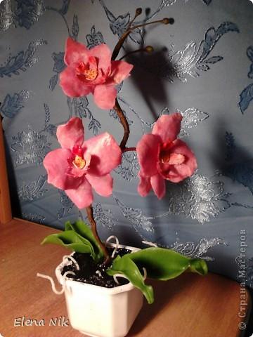 Решила еще раз попробовать сделать орхидею.Теперь получилась веточка. фото 1
