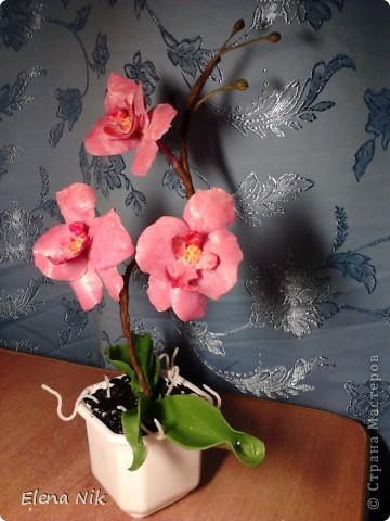 Решила еще раз попробовать сделать орхидею.Теперь получилась веточка. фото 4