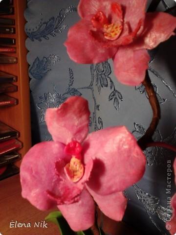 Решила еще раз попробовать сделать орхидею.Теперь получилась веточка. фото 3